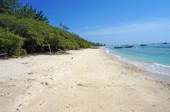 Spiaggia di sabbia della regione selvaggia e incontaminata Immagine Stock Libera da Diritti