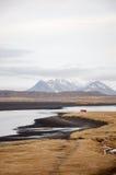 Spiaggia di sabbia nera, erba asciutta, Hvitserkur, Islanda Fotografie Stock