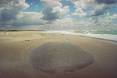 Spiaggia di sabbia senza il tempo ventoso della gente Fotografia Stock