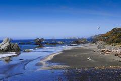 Spiaggia di Sandy sul litorale del nord fotografia stock