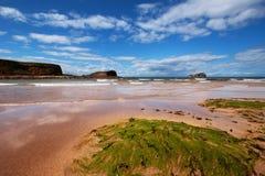 Spiaggia di Seacliff Immagini Stock Libere da Diritti
