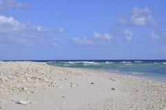 Spiaggia di signora Elliot Island Fotografie Stock Libere da Diritti