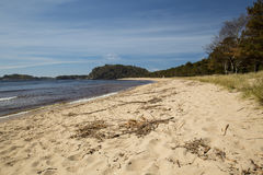 Spiaggia di Sjosanden, Mandal, Norvegia immagini stock libere da diritti