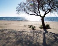 Spiaggia di sogno Fotografie Stock Libere da Diritti