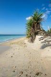 Spiaggia di sogno, Bali Indonesia, isola di Nusa Penida Fotografia Stock Libera da Diritti