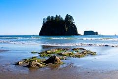 Spiaggia di spinta della La a Washington Fotografia Stock