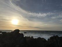 Spiaggia di stato di Asilomar Fotografia Stock