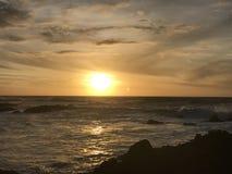Spiaggia di stato di Asilomar Immagini Stock