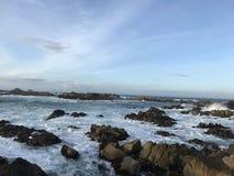 Spiaggia di stato di Asilomar Immagini Stock Libere da Diritti