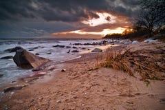 Spiaggia di Svarte Fotografie Stock Libere da Diritti