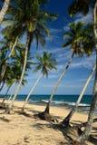 Spiaggia di Tangalle nello Sri Lanka Immagini Stock Libere da Diritti