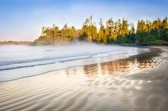 Spiaggia di Tofino Fotografia Stock