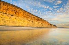 Spiaggia di Torrey Pine Fotografie Stock