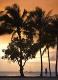 Spiaggia di tramonto Immagine Stock