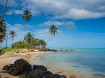Spiaggia di Tropica Immagini Stock Libere da Diritti
