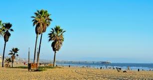 Spiaggia di Venezia, Venezia, Stati Uniti Immagini Stock Libere da Diritti