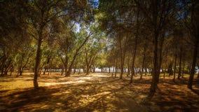 Spiaggia di Vera, Almeria Fotografia Stock