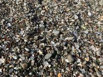 Spiaggia di vetro Immagini Stock