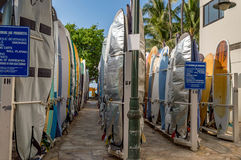 Spiaggia di Waikiki Immagine Stock