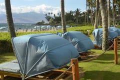 Spiaggia di Wailea, Maui, Hawai Fotografia Stock