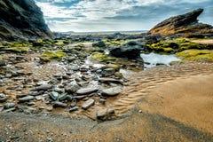 Spiaggia di Whipsiderry Fotografia Stock