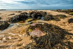 Spiaggia di Whipsiderry Immagine Stock