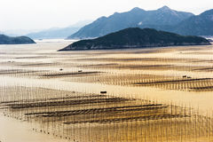 Spiaggia di Xiapu di Fujian, Cina. Fotografie Stock Libere da Diritti