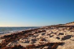 Spiaggia di Yanchep Immagine Stock Libera da Diritti