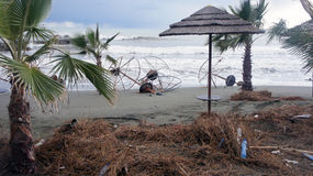 Spiaggia dopo la tempesta Fotografia Stock Libera da Diritti