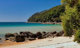 Spiaggia dorata della baia della corteccia Immagini Stock Libere da Diritti