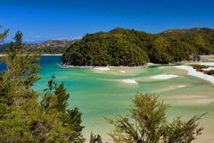Spiaggia dorata della baia della torrente Immagine Stock Libera da Diritti