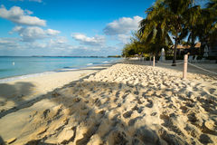 Spiaggia dorata nei tropici Fotografia Stock Libera da Diritti