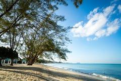 Spiaggia dorata nei tropici Fotografie Stock Libere da Diritti