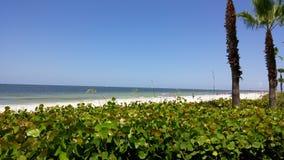 Spiaggia e costruzioni della Florida Immagine Stock