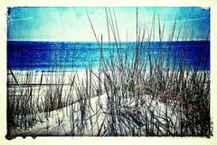 Spiaggia e dune Fotografie Stock