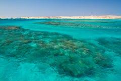 Spiaggia e Mar Rosso di estate nell'isola di paradiso dell'Egitto Immagini Stock Libere da Diritti