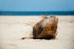 Spiaggia e noce di cocco Immagini Stock Libere da Diritti