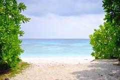 Spiaggia ed oceano blu Fotografia Stock