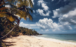Spiaggia ed oceano, Repubblica dominicana Fotografia Stock