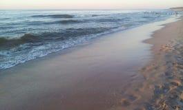 Spiaggia ed onde dal Mar Baltico Immagini Stock