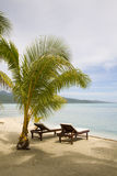 Spiaggia esotica tropicale Immagini Stock Libere da Diritti