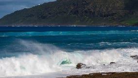 Spiaggia hawaiana con le onde blu immagini stock