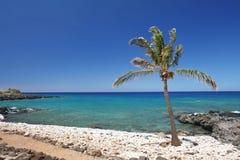 Spiaggia hawaiana tropicale Fotografia Stock Libera da Diritti