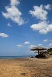 Spiaggia idilliaca di paradiso tropicale. La Sri Lanka Fotografia Stock Libera da Diritti