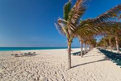 Spiaggia idillica al mare caraibico Immagini Stock