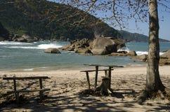 Spiaggia. Il Brasile Fotografia Stock