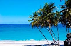 Spiaggia inferiore Barbados della baia Fotografia Stock