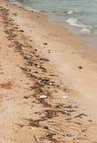 Spiaggia inquinante Immagini Stock Libere da Diritti