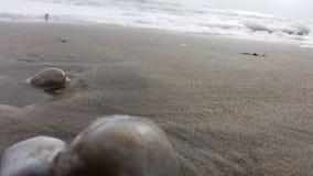 Spiaggia in inverno Fotografia Stock Libera da Diritti