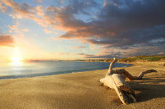 Spiaggia isolata al tramonto Fotografia Stock Libera da Diritti